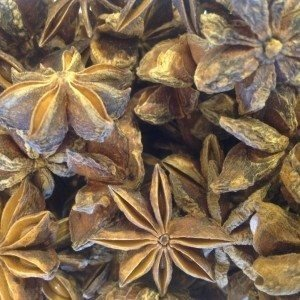 Anise Star_edited.jpg